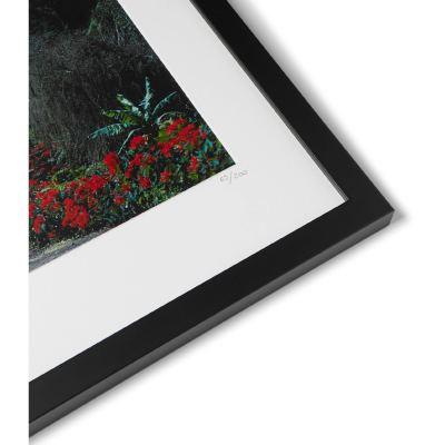 framed-1976-hawaii-surfer-print-16-8008779904995936
