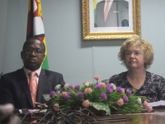 UK, Ncube Discuss Zimbabwe's Future Challenges