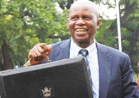 Chinamasa Back Pulled Back to Head Zimbabwe