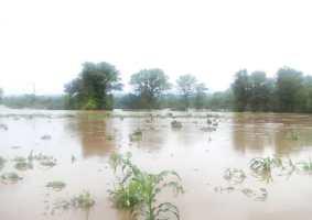 Heavy Rains Besiege Binga District With Floods