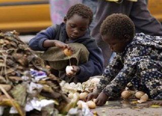 Harare Province Raises Concern of High Crime Rate Among Street Kids