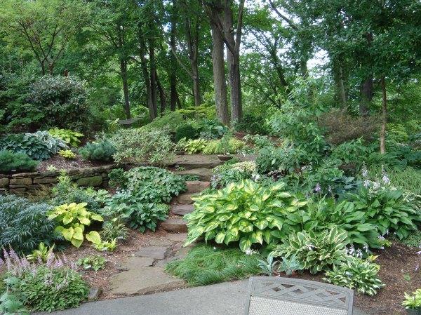 garden designers roundtable trees