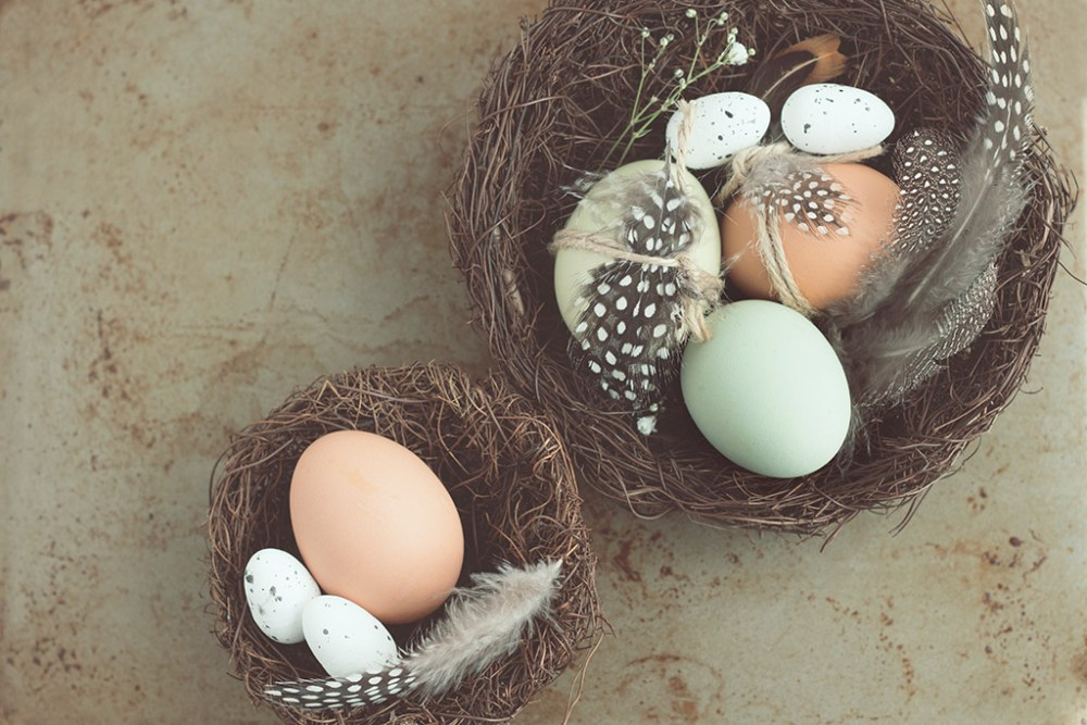 Don't Put All Your Eggs In One Basket