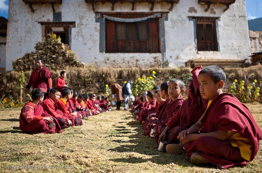 Лама и ученики