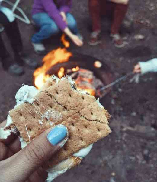 National S'mores Day Celebration at BHWP