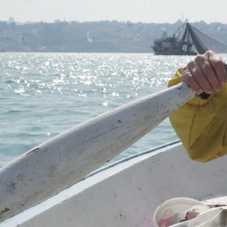 Deniz Küstü: Beykoz'da Solastalji ve Ekolojik Keder