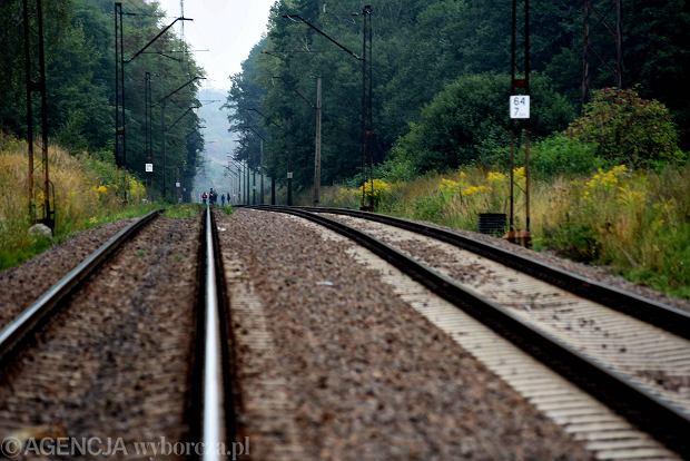 65. kilometr trasy kolejowej między Wrocławiem i Wałbrzychem - tę okolicę najczęściej wskazuje się jako miejsce ukrycia