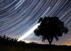 Czy Perseidy spadają na Ziemię? Jak szukać meteorytów?