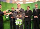 Na PSL wpłacali wszyscy: posłowie, senatorowie, ministrowie... Sprawą zajęła się PKW i przerwała prace