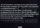 """""""W lesie spotykają się duchy pomordowanych i śp. prezydenta"""" - zobacz przez co """"Smoleńsk"""" Krauzego nie dostał dotacji"""