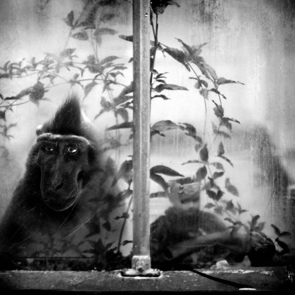 Tak autorka tego niezwykłego fotoreportażu opowiada o sobie i swojej pracy:<br>