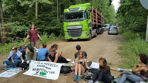 Zdjęcie numer 1 w galerii - Szyszko nie wstrzymał wycinki w Puszczy Białowieskiej. Ekolodzy blokowali tiry z drewnem