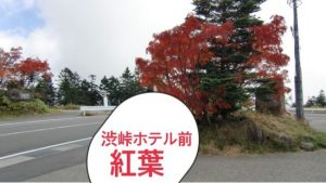 渋峠ホテル紅葉画像