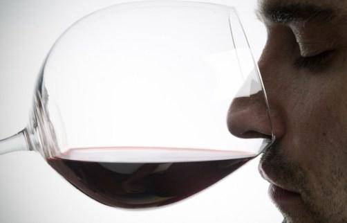 degustazione olfattiva vino