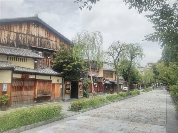 祇園 白川南通りの柳の木と石畳などの景観