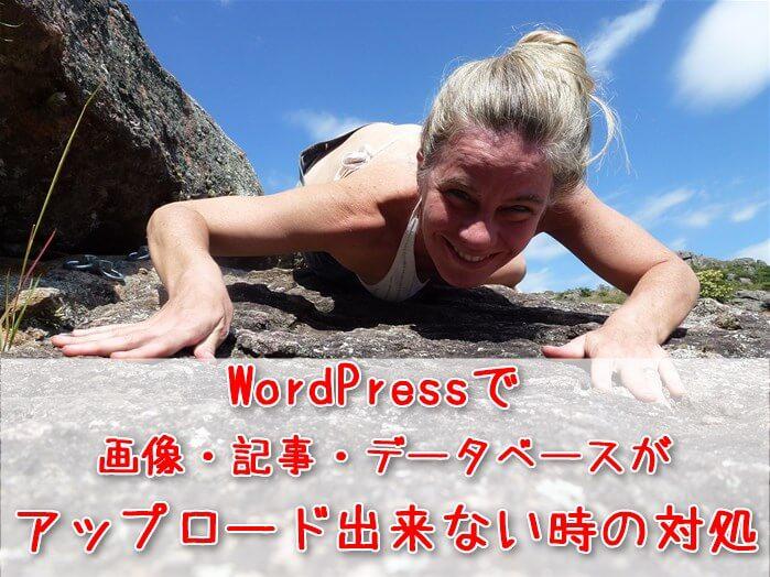WordPressで画像・記事・データベースが、アップロード出来ないときの対処:岩を這いずる女性