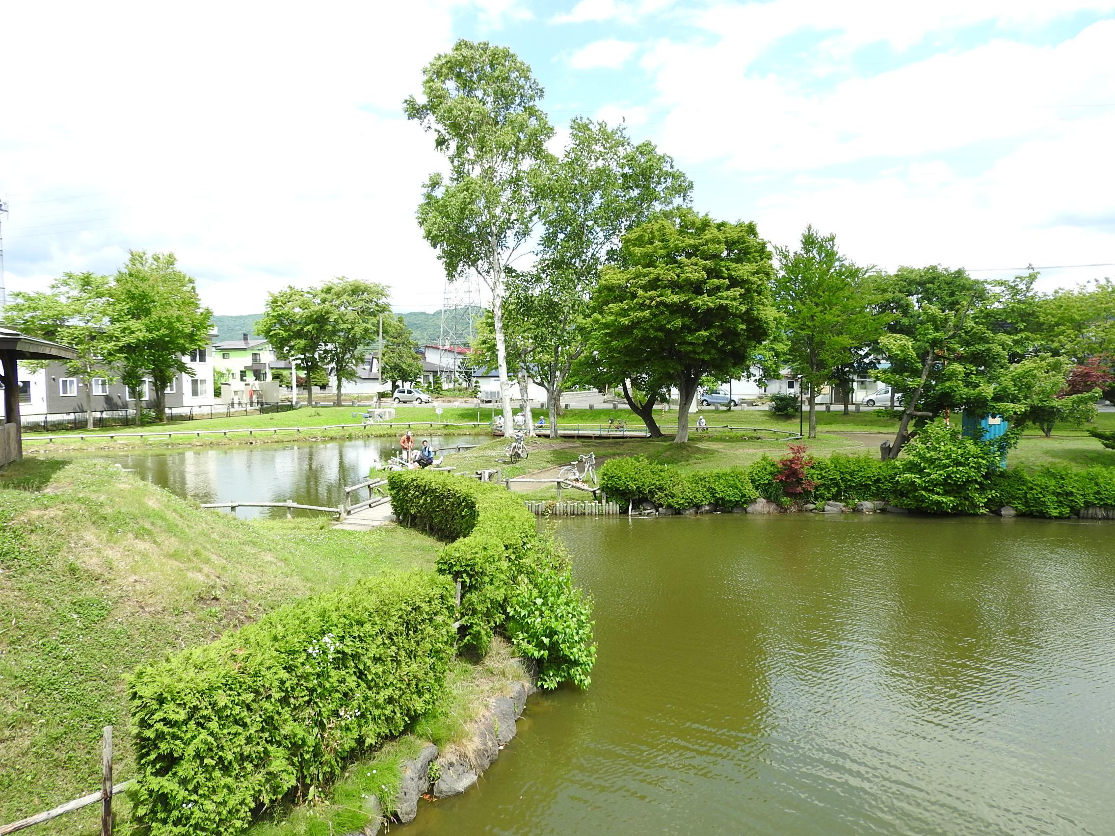 和田公園018