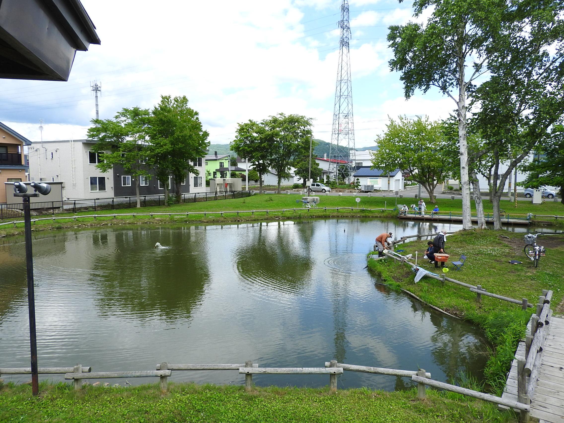 和田公園020