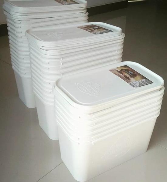 Ember Es Krim Kotak Kapasitas 5 Liter  BibitBungacom