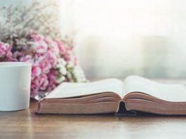 Как прочитать Библию за год? План на 12 месяцев