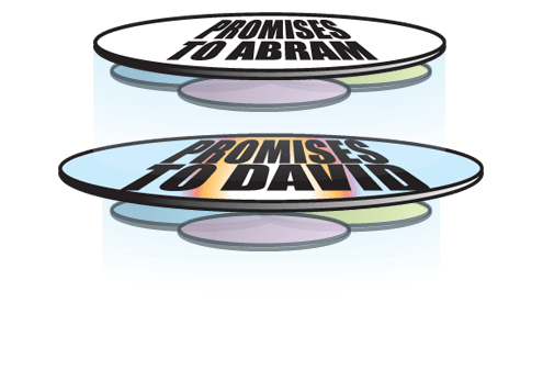 davidic promise package