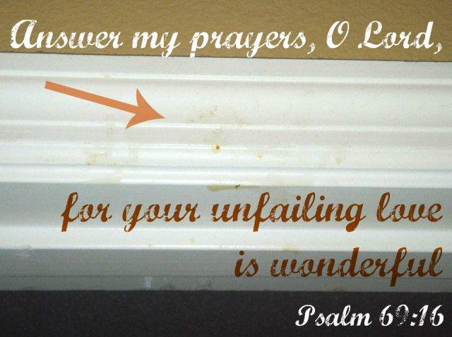 Psalm 69:16