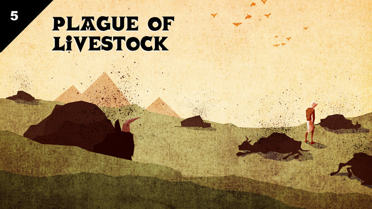 Death of livestock