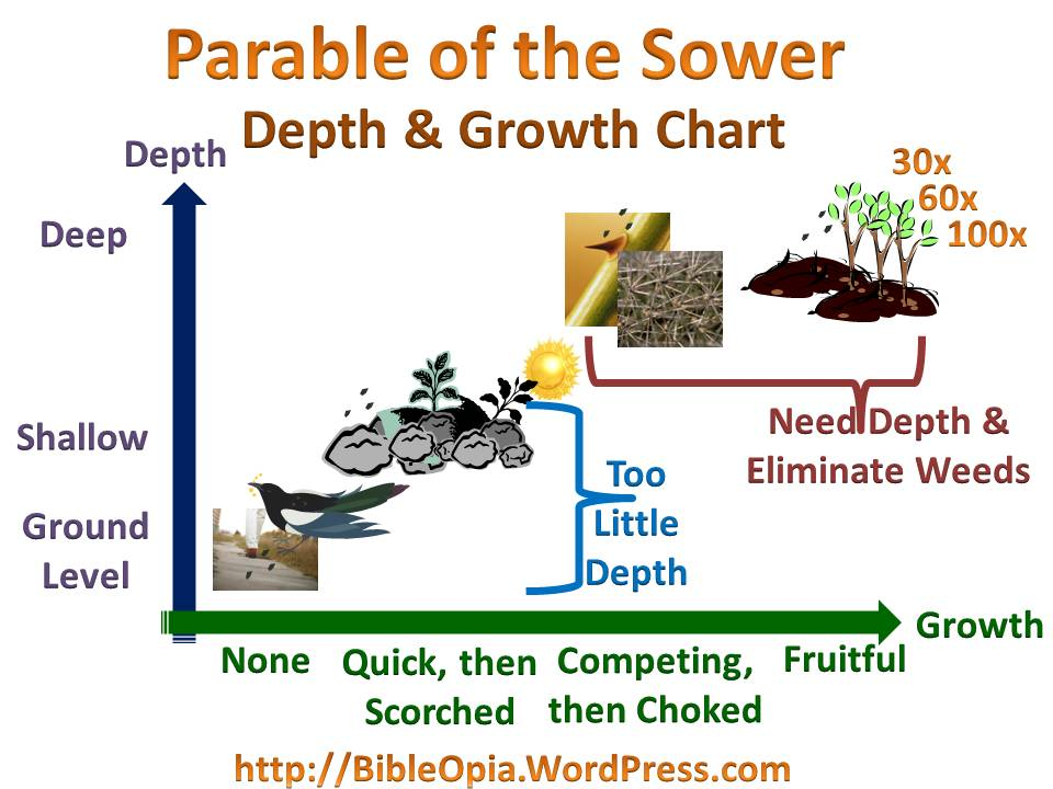 Parable of the Sower Explained (2/4)