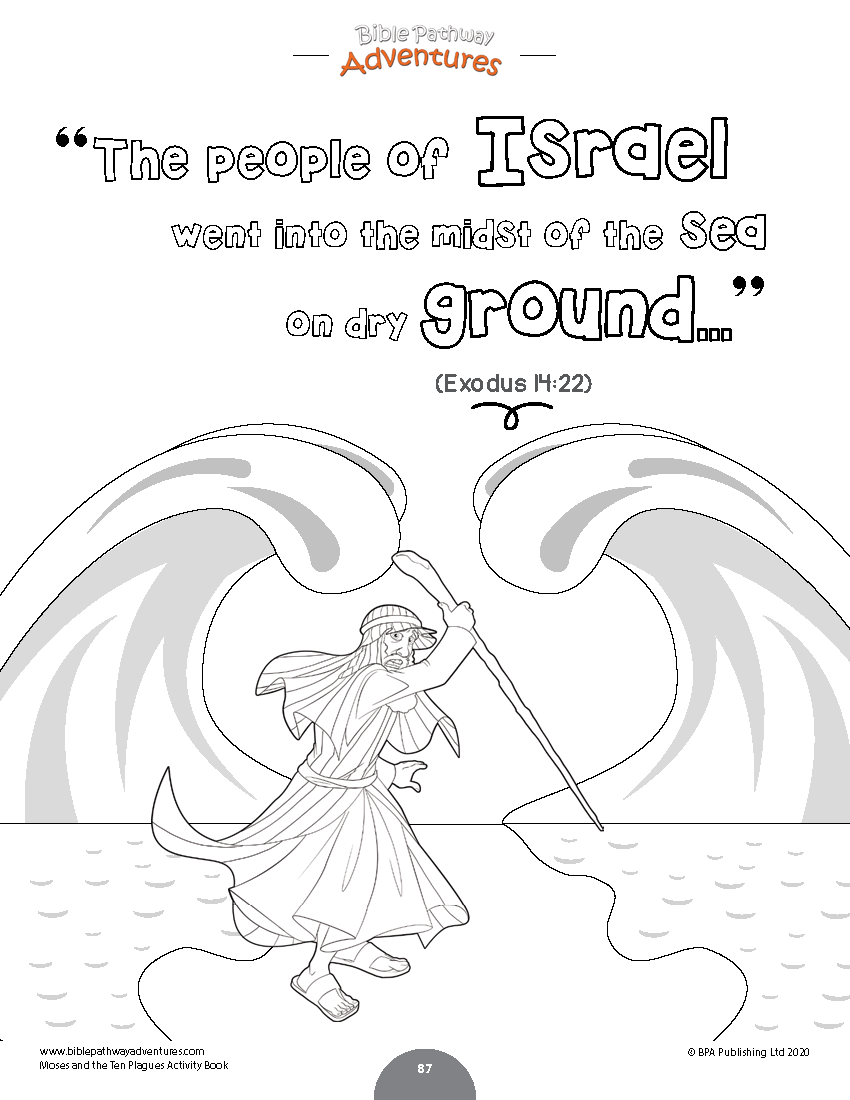 Moses and the Ten Plagues Activity Book: Kids Ages 6-12