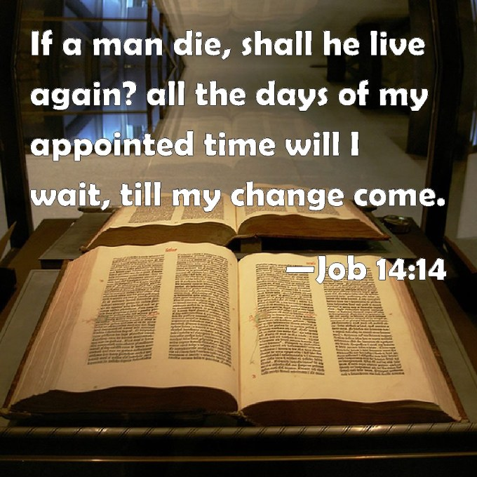 Image result for I all my appointed time I will WAIT TILL MY CHANGE COMES