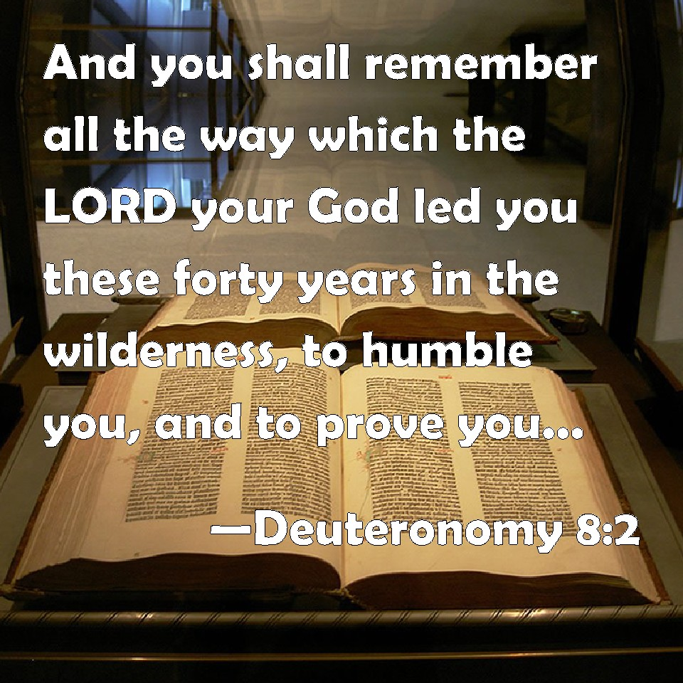 Image result for wilderness to humble you