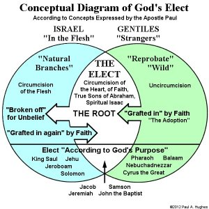 Election and Free Will in Paul's Epistle to the Romans
