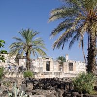 22. Hike the Bible - Why Capernaum?
