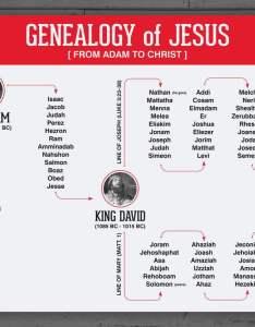 Genealogy of jesus also age the earth  luke  testimony bible science guy rh biblescienceguy wordpress