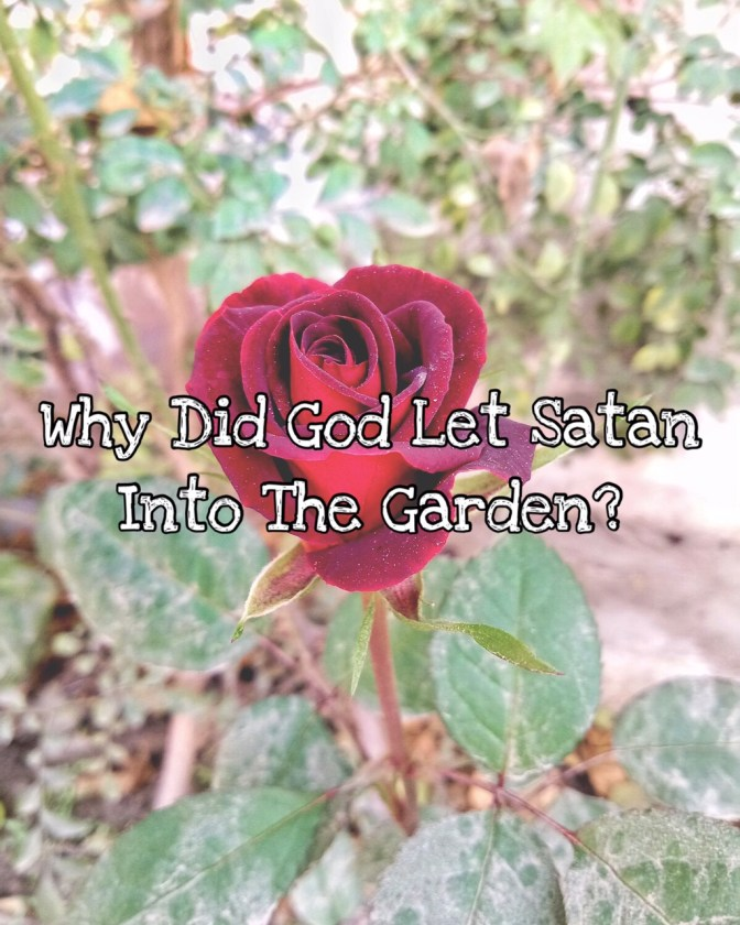 KIDScast#85 Listener Question: Why Did God Let Satan Into The Garden?
