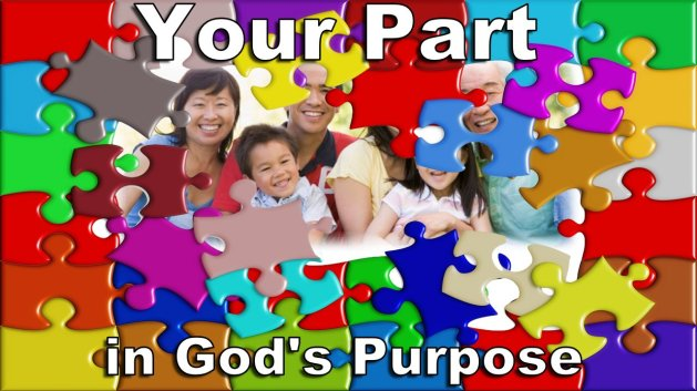 Your Part in Gods Purpose