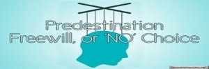 Predestination,Freewill or NO Choice? Video post