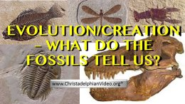 Evolution Vs Creation: What do the Fossils Tell Us!