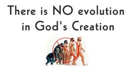 Theistic Evolution Article: Questioning Fundamental Teachings