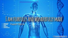"Thought for March 18th. ""FEARFULLY AND WONDERFULLY MADE"""