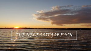 The Necessity of Pain - Pause to Consider Video Podcasts