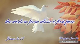 """Daily Readings & Thought for June 9th. """"THE WISDOM FROM ABOVE IS FIRST PURE"""""""