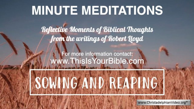 Minute Meditation Video Episode: Sowing and Reaping