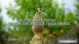 "Daily Readings & Thought for September  20th. ""BLESSED ARE THOSE ... WHOM THE MASTER FINDS AWAKE"""
