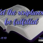 Compilation of Thought for the Day Bible Verses – February 2021