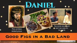Good Figs in a Bad Land - Daniel