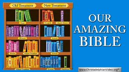 Our Amazing Bible