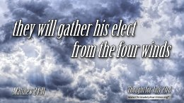 """Daily Readings & Thought for July 23rd. """"THEY WILL GATHER HIS ELECT … """""""