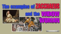 *Must See*!  The examples of Zacchaeus and the Widow woman.