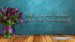 """Daily Readings & Thought for October 23rd. """"THEY WILL LOOK ON HIM"""""""
